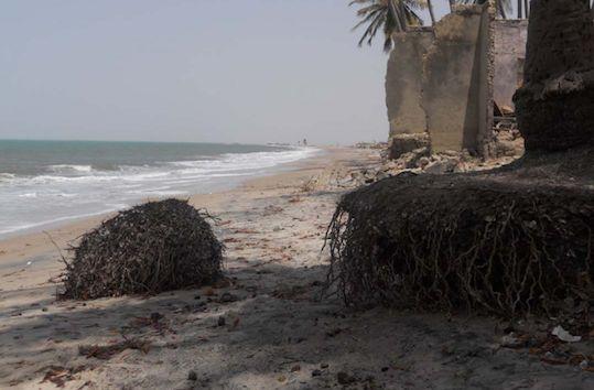 Changements climatiques : Joal, Palmarin et Djifer en sursis