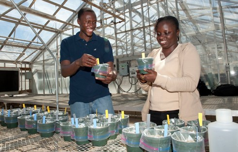 Program teaches students from Virginia and Senegal about agriculture